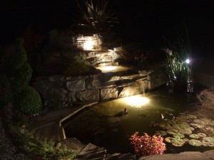 Waterfall and pond at night