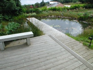 Large pond with boardwalk