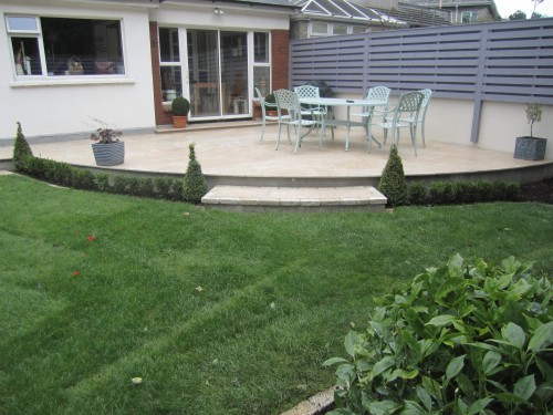 Buxus cones & hedge