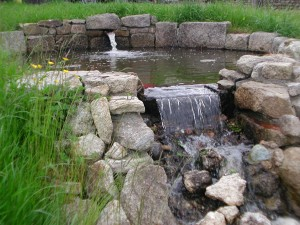 Top pond with header stone
