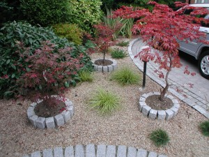 Low Maintenance Planting