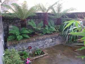 Raised Limestone bed Booterstown, Dublin